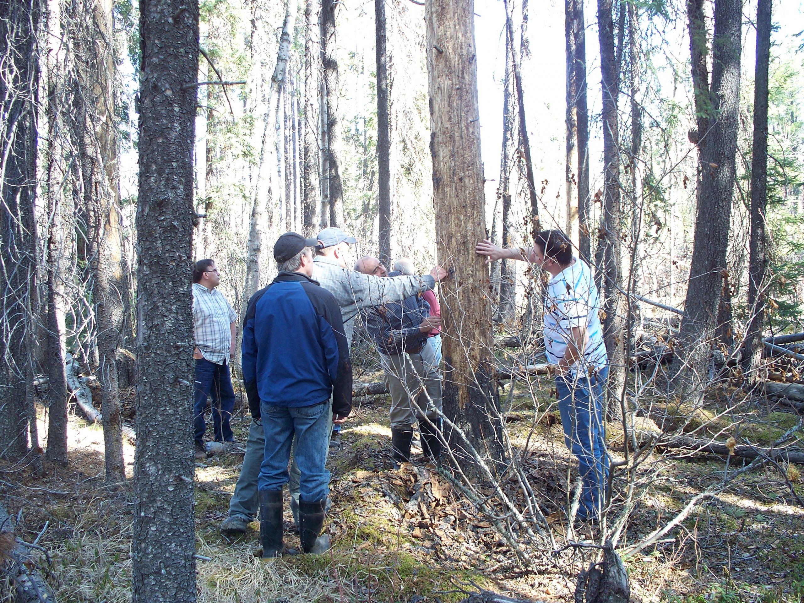 Field Trip MPB - Grizzly April 20, 2010 001